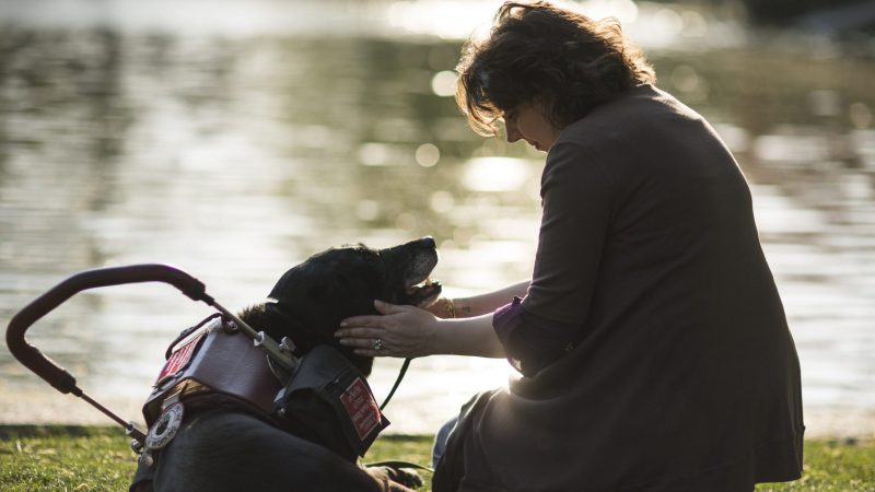 A service dog and a woman exchange a loving look